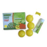 DUMMY FRUIT TRAP SET - παγίδα εντόμων - κίτρινη - σετ