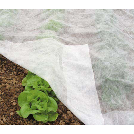 προστασία των φυτών μας από κρύο και παγετούς