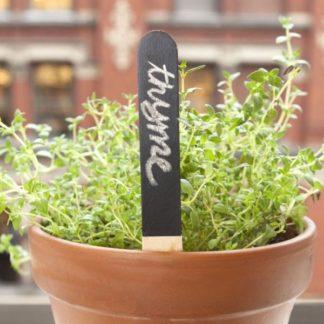ταμπελάκια σποράς / φυτών blackboard